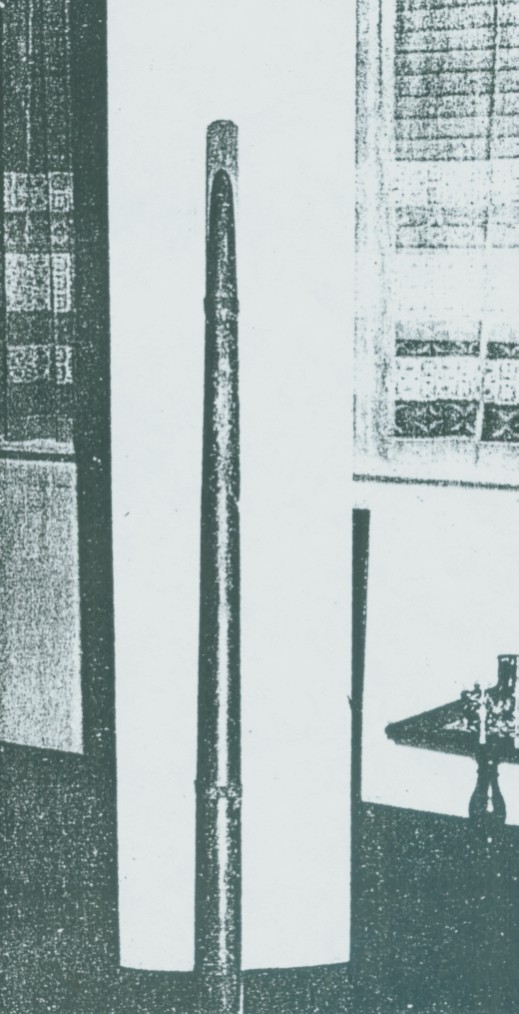 Bastón de Mando (Prof. Alfredo Terrera) Baston